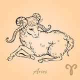Aries Stock Images