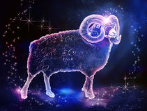 Aries_Ram royalty free stock photos