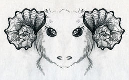 Aries the ram sketch Stock Photography