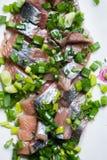 Aringa affettata con la cipolla verde su un piatto macro colpo del fuoco selettivo con DOF basso Fotografia Stock Libera da Diritti