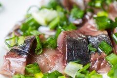 Aringa affettata con la cipolla verde su un piatto macro colpo del fuoco selettivo con DOF basso Fotografie Stock Libere da Diritti