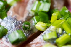 Aringa affettata con la cipolla verde su un piatto macro colpo del fuoco selettivo con DOF basso Immagine Stock