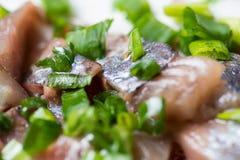 Aringa affettata con la cipolla verde su un piatto macro colpo del fuoco selettivo con DOF basso Immagini Stock Libere da Diritti