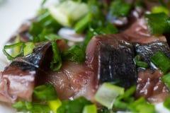 Aringa affettata con la cipolla verde su un piatto macro colpo del fuoco selettivo con DOF basso Fotografia Stock