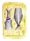 Aringa olandese nel colore di acqua Fotografia Stock Libera da Diritti