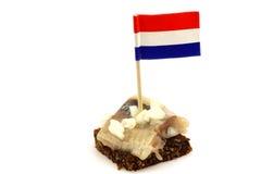 Aringhe fresche (Hollandse olandese Nieuwe) fotografia stock libera da diritti