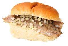Aringhe olandesi del panino Fotografia Stock