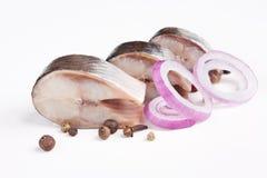 Aringhe salate con la spezia e la cipolla Fotografia Stock