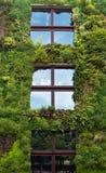 Aris - grön vägg på delen av yttersidan av Quaien Branly Mus Arkivfoto