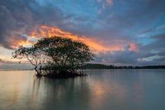 Arise. Beautiful sunrise moment at sumatera, indonesia royalty free stock image