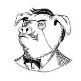 Aristokratisches Schwein-Monokel-Schwarzweiss-Zeichnung stockfotos