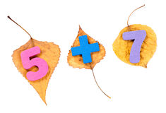 Arithmetic symbols on the autumn leaves isolated  on white Stock Photos
