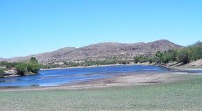 Small springs where reeds grow lake Royalty Free Stock Image
