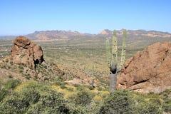 arizona ökenliggande royaltyfri fotografi