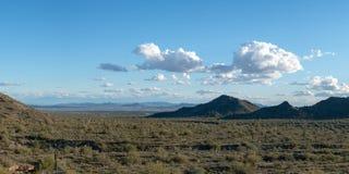 Arizona ökenpanorama royaltyfri bild