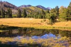 Arizona Autumn Stock Images