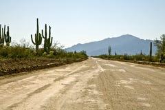 Arizona Backroad. Back road in the Arizona desert near Phoenix showing saguaro royalty free stock photography