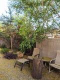 Arizona Backyard in Spring Royalty Free Stock Photos
