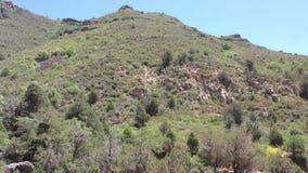 Arizona, barranco de la cala del roble, enfoque de A adentro en un pico de montaña en barranco de la cala del roble almacen de video