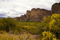 Arizona berg near Saguaro sjön Royaltyfri Fotografi