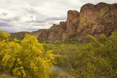 Arizona-Berge nähern sich Saguaro See Lizenzfreie Stockfotografie