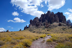 Arizona cactus. Superstition mountains in Arizona, along the path towards the top on a sunny day stock photos