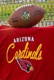 Arizona Cardinals NFL Imagen de archivo libre de regalías