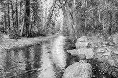 arizona colorado hästskoflod USA Royaltyfri Fotografi