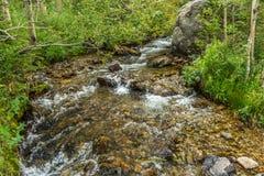 arizona colorado hästskoflod USA Royaltyfria Bilder