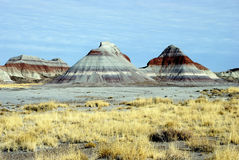 arizona colored desert forest hills petrified 免版税库存图片