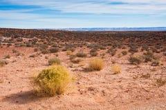 Arizona Desert. Desert near Monument Valley Tribal Park, Arizona Royalty Free Stock Image