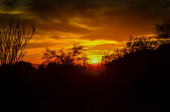 Arizona Desert. Breathtaking sunset in the in Sonoran Desert stock photography