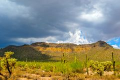 Arizona Desert With Clouds Over Mountain stock photography