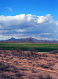 Arizona Desert Farms Royalty Free Stock Images
