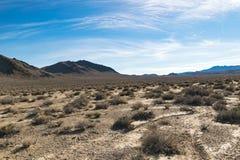 Arizona desert in January, USA. Scenic picture of the beautiful horizon in Arizona desert, USA Stock Photography