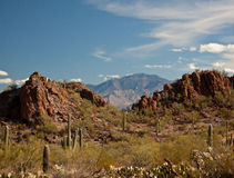 Arizona Desert Landscape Royalty Free Stock Photos