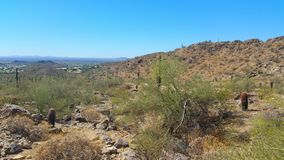 Arizona Desert Landscape. With blue sky& x27;s and cactus stock photography