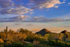 Arizona Desert Landscape. Arizona life, blue skies desert colors and natural landscaping make for the good life Royalty Free Stock Image
