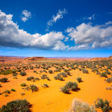 Arizona desert near Colorado river USA Royalty Free Stock Photography