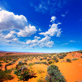 Arizona desert near Colorado river USA Royalty Free Stock Images