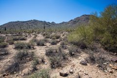 Arizona Desert Scenery Stock Photos