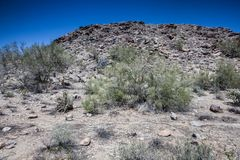 Arizona Desert Scenery Royalty Free Stock Images
