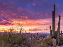 Epic Arizona Desert Sunset with Cactus In North Scottsdale. Epic and Classic Arizona Desert Sunset in North Scottsdale with caustun in foreground stock image