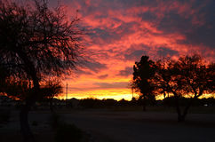 Arizona Desert Sunset. Spectacular Sunset at Tucson RV resort stock photos