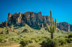 Arizona Desert. Superstition Mountains in the Sonoran Desert Stock Images