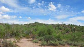 arizona dutchman gubjący park Obraz Stock