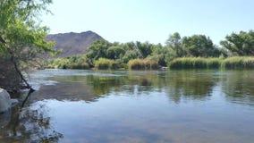 Arizona, el río Salt, opinión de A que mira contra la corriente en el río Salt con árboles y una montaña almacen de metraje de vídeo