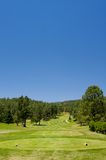 An Arizona golf course on a summer day Stock Image
