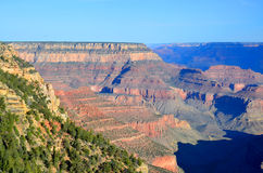 Arizona grand Canyon Royaltyfria Bilder
