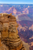 Arizona Grand Canyon National Park Mother Point US Royalty Free Stock Photos